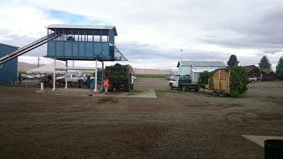 Gasseling Hops Coming Off Truck