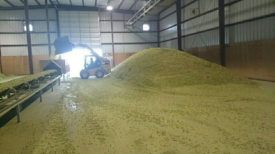 Yakima Valley Hop Processing