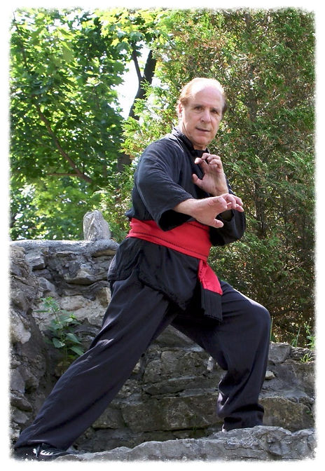 Man in Kung Fu pose on large rock