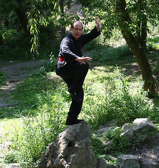 Man in kung fu pose on rock outdoors
