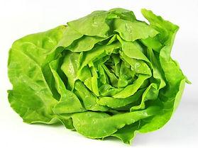 Salat Santler