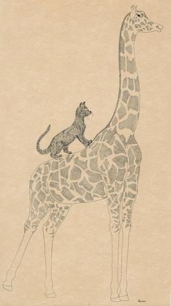 GIRAFFE AND CAT