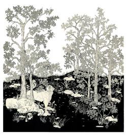 St. Bernard In the Woods