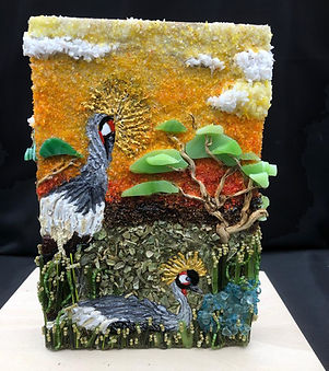 grey crowned crane front.jpg