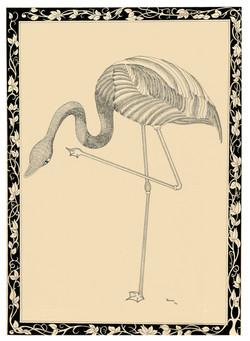 Standing Flamingo