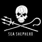 Sea Shepherd Canberra