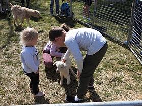 Petting zoo at 2017 Canberra Times Fun Run
