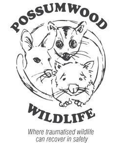 Possumwood Wildlife