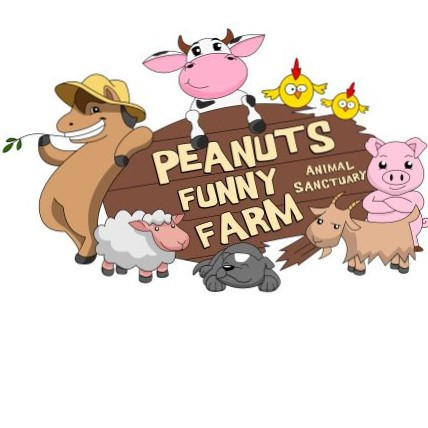 Peanuts Funny Farm