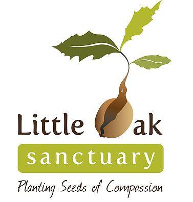 Little Oak Sanctuary