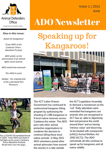 Newsletter 2021 06 - front.png