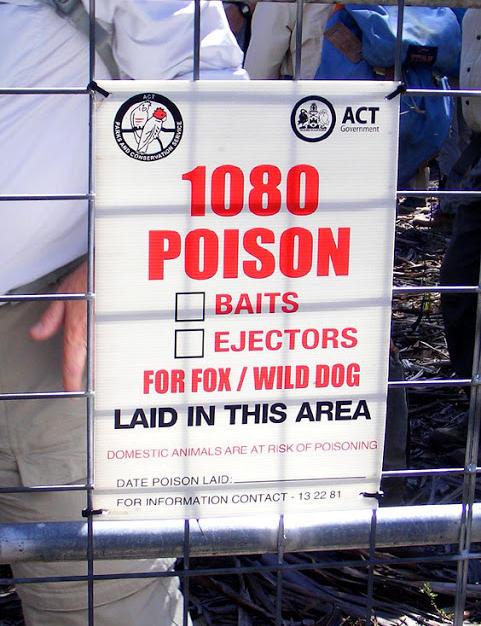 1080 Poison