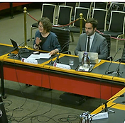 ADO at POCTAA inquiry