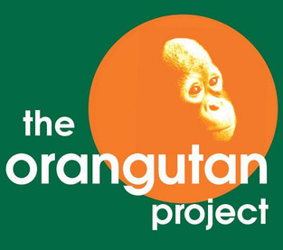 The Orangutan Project_edited.jpg