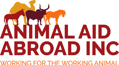 Animal Aid Abroad