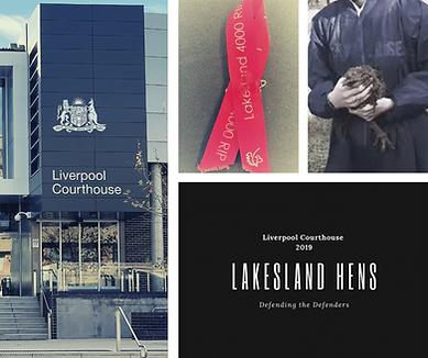 Lakesland Hens 2019