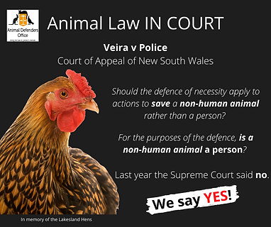 Veira v Police Court of Appeal of NSW(2).png
