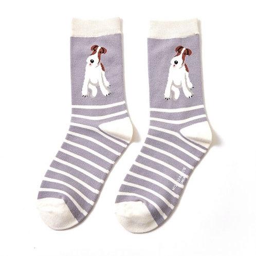 Miss Sparrow Fox Terrier Stripe Socks