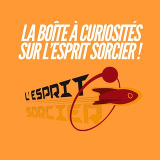 la_boite_a_curiosites_6