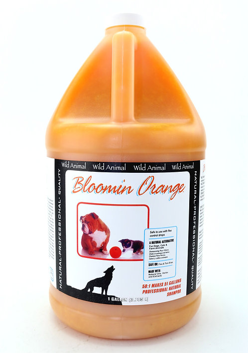 Bloomin Orange Shampoo by Wild Animal 50:1 - Gallon
