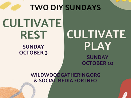 WildWood: Cultivate Play