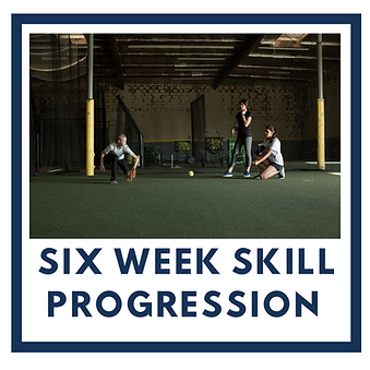 six week skill.png