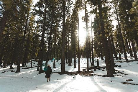 Lake Tahoe - Canon Tales-11.jpg
