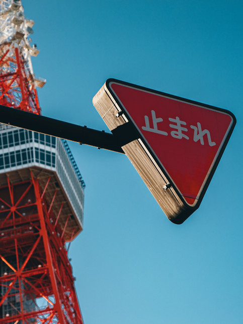COSAS QUE DEBES SABER ANTES DE VIAJAR A JAPÓN