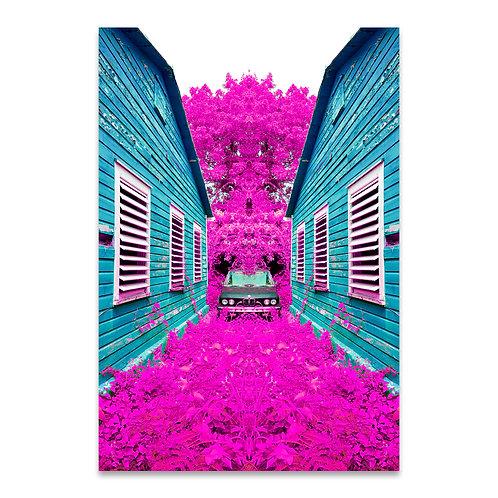 Dynamic Mirror Pink