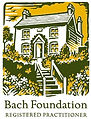 bach foundation.jpg