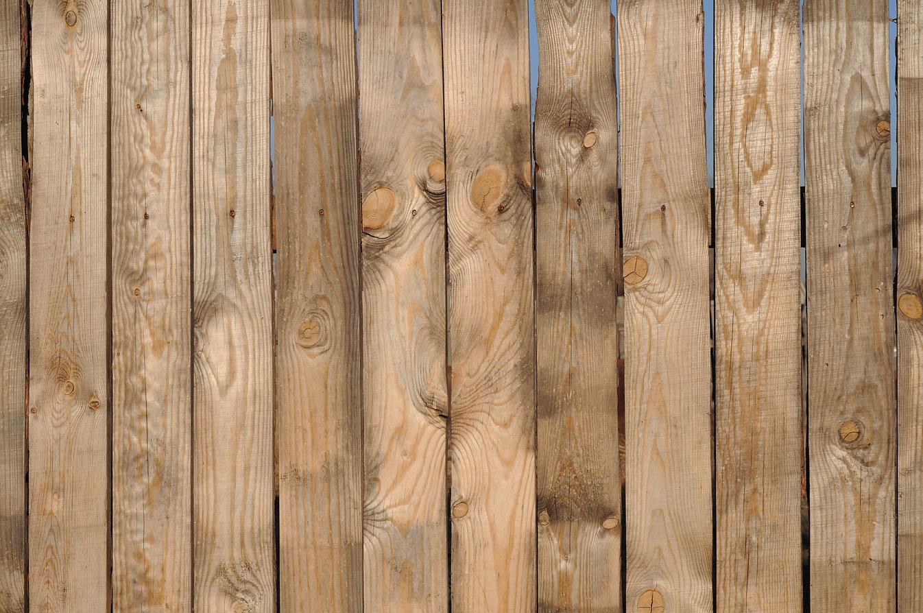 fence-19544.jpg