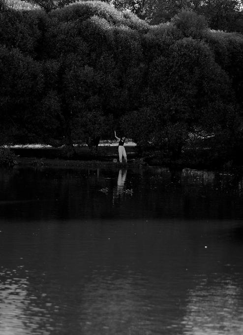 Artist Emma Lomy at her pond
