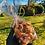 Thumbnail: Mini-cookies