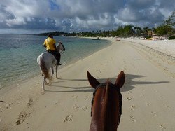 Beach-horseride4.JPG