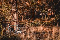 imola Fahrrad