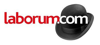 herve delhumeau,laborum, social media, digital marketing, hd consulting, business strategy, internet