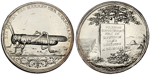 100160  |  GERMANY & POLAND. Schlesien/Slask (Silesia) silver Medal.
