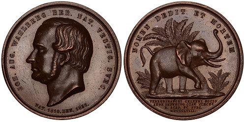 101218  |  SWEDEN. Johan August Wahlberg bronze Medal.