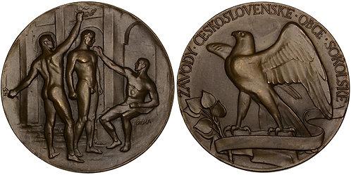 101248  |  CZECHOSLOVAKIA. Sokol Gymnastics bronze award Medal.