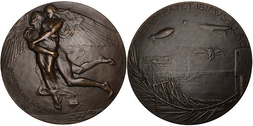 100242  |  FRANCE. Académie des Sciences bronze Medal.