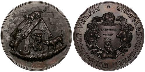 100217  |  AUSTRIA-HUNGARY. Wien (Vienna) bronze award Medal.