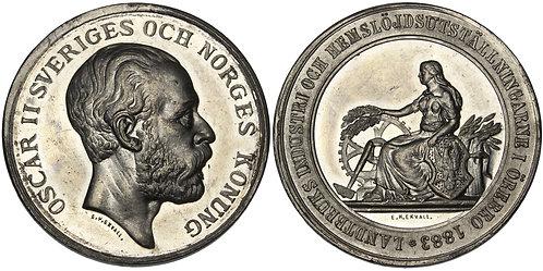 101131  |  SWEDEN. Oscar II white metal Medal.