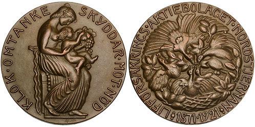 101524     SWEDEN. Lifförsäkrings AB Nordstjernan bronze Medal.