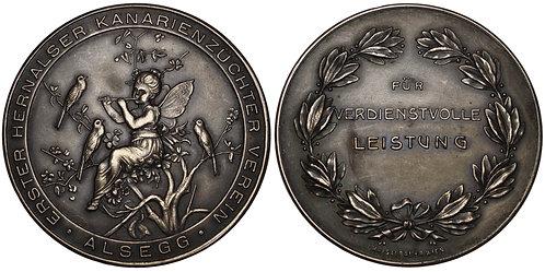 100984  |  AUSTRIA. Hernals. Alsegg. Silvered Bronze Prize Medal.