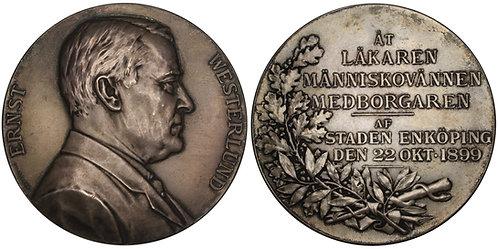 101233  |  SWEDEN. Ernst Otto Theodor Westerlund silver Medal.