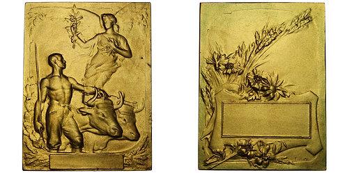 100754  |  FRANCE. Agricultural gilt bronze Award Plaque.