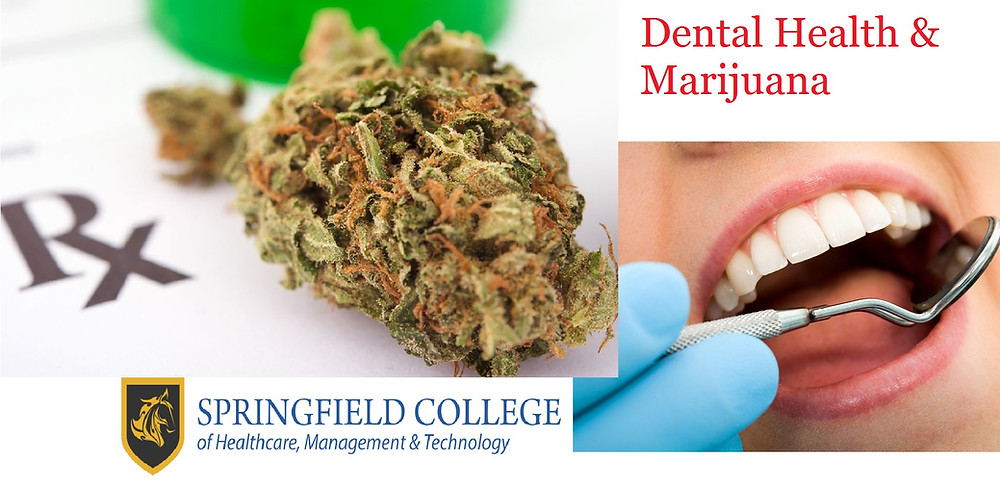 Marijuana and Dental Health