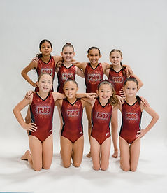 Silver Team Pic .jpg