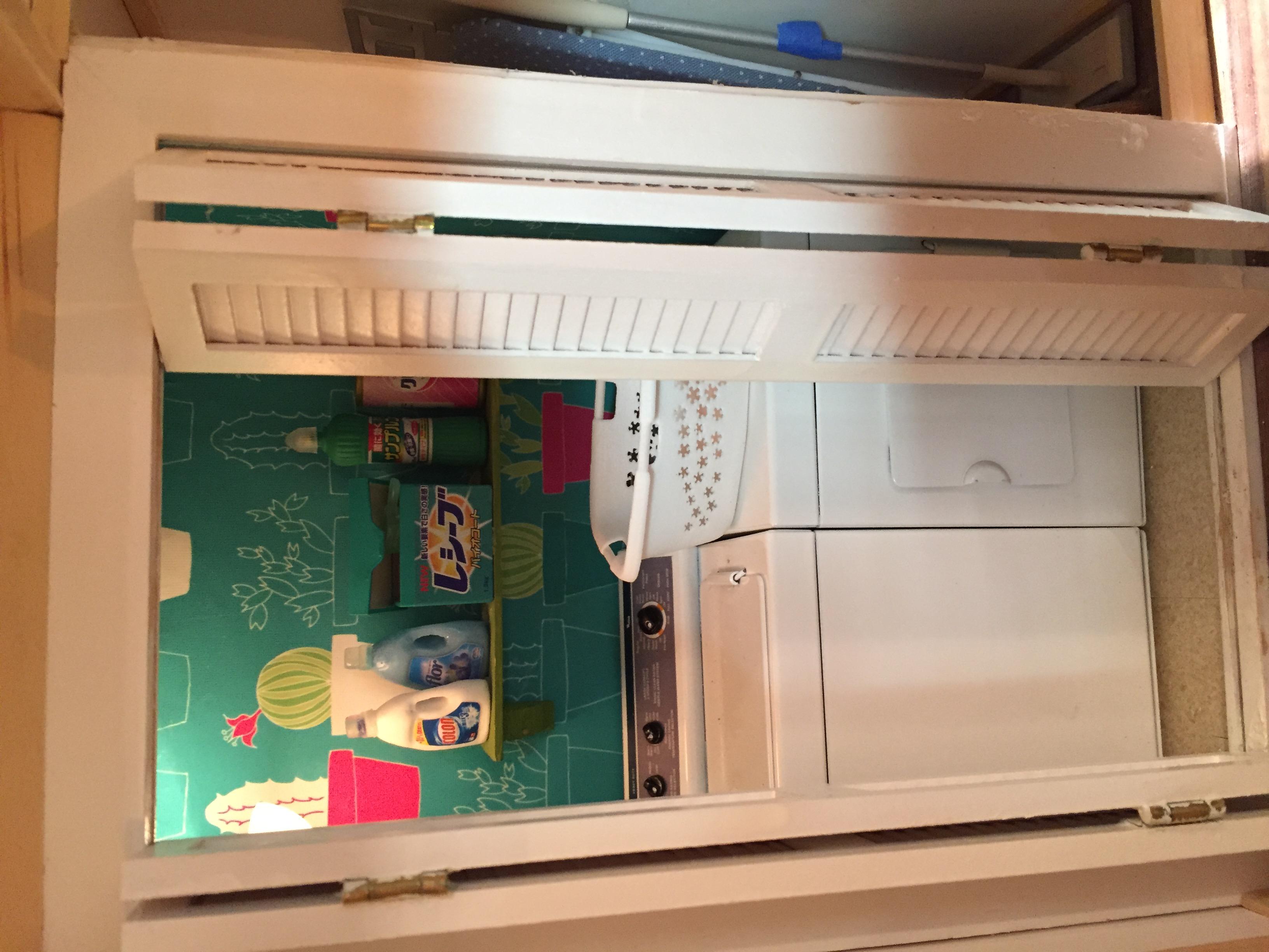 Cacti Laundry Closet