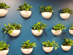 Independence Walton Wall Sconce Planters